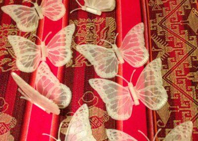 Farfalle_2